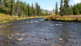 Gardner River stock videobeelden