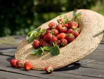 Gardner sunhat with strawberry Royalty Free Stock Photos