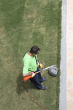 A gardner with a weed wacker. Stock Image