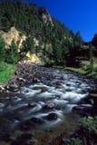 gardnernationalparkflod yellowstone arkivbild
