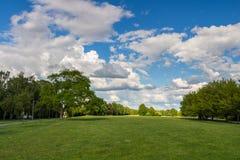Garez avec le pré vert de pré et de vert forêt et le ciel bleu Scène d'été Photo libre de droits