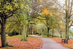 Garez en automne avec une voie intervenant dans un arrangement rural Image libre de droits