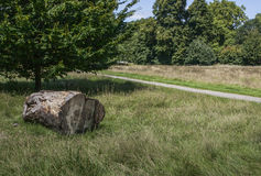 Garez un jour ensoleillé et un tronc d'arbre Photographie stock