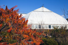 Garfield Park Conservatory royalty free stock images
