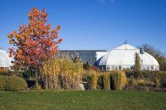 Garfield Park Conservatory Stock Images