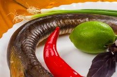 Garfish, billfish ruwe en verse, hoogste die mening, met uien, citroen, op het koken wordt voorbereid royalty-vrije stock afbeeldingen