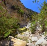 Garganta Avakas Península de Akamas chipre Imagen de archivo libre de regalías