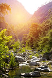 Garganta com o rio da montanha no parque natural Imagens de Stock