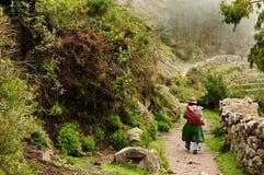Garganta Cotahuasi, Peru fotografia de stock