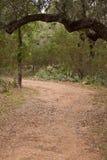 Garganta da fuga de caminhada de Eagles Foto de Stock