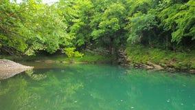 Garganta de Abahsa do rio Martvili, Geórgia filme