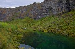 Garganta de Asbyrgi no parque nacional de Jokulsargljufur, Islândia Foto de Stock