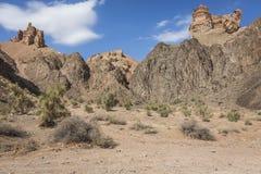 Garganta de Charyn e o vale dos castelos, parque nacional, Kazakhst Foto de Stock Royalty Free