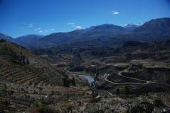 Garganta de Colca de Peru imagem de stock