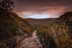 Garganta de Colca e a vista dos Andes Fotografia de Stock Royalty Free