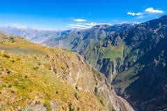 Garganta de Colca, Peru imagem de stock royalty free