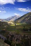 Garganta de Colca, Peru Foto de Stock Royalty Free