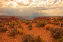 Garganta de Colorado fotografia de stock royalty free