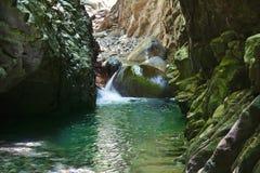 Garganta de encantamento com córregos de fluxo do rio da montanha imagem de stock royalty free