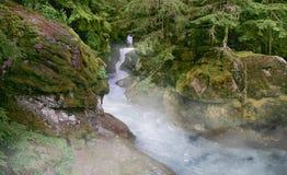 Garganta de la avalancha Imagen de archivo libre de regalías