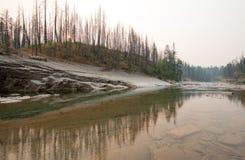 Garganta de la cala del prado en South Fork del río de cabeza llana en el área de Bob Marshall Wilderness en Montana los E.E.U.U. Imagen de archivo libre de regalías