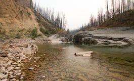 Garganta de la cala del prado en South Fork del río de cabeza llana en el área de Bob Marshall Wilderness en Montana los E.E.U.U. Foto de archivo
