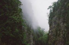 Garganta de la montaña en la niebla fotografía de archivo libre de regalías