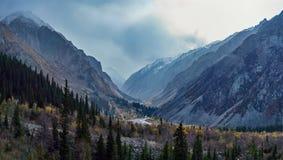 Garganta de niebla de la montaña foto de archivo