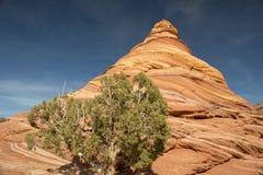 A garganta de Paria, penhascos dos vermelhões, o Arizona Fotos de Stock Royalty Free