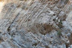 Garganta de Samaria, Creta Foto de archivo libre de regalías