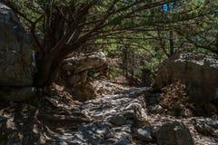 Garganta de Samaria crete Grecia fotos de archivo