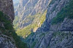 Garganta de Tara do rio, Montenegro Imagem de Stock Royalty Free