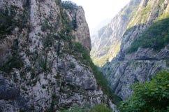 Garganta de Tara do rio, Montenegro imagens de stock