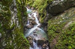 Garganta de Tolmin, naturaleza, Eslovenia Foto de archivo