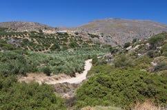 Garganta de Zakros en la isla de Crete en Grecia fotos de archivo libres de regalías