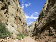 Garganta del capitolio, parque nacional del filón de Captiol, Utah Fotografía de archivo libre de regalías