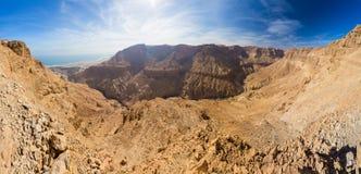 Garganta do deserto e panorama do Mar Morto fotos de stock