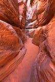 Garganta do entalhe do Sandstone no vale de Nevada do incêndio Fotografia de Stock Royalty Free
