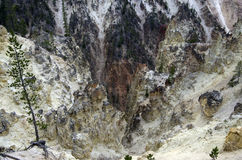 Garganta do parque nacional de Yellowstone imagem de stock royalty free