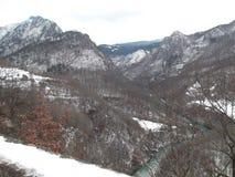 A garganta do rio de Tara foto de stock