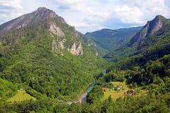 Garganta do rio de Tara imagem de stock royalty free