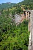 Garganta do rio de Tara foto de stock