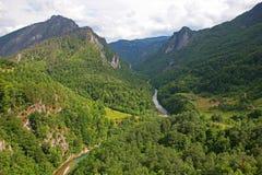 Garganta do rio de Tara fotografia de stock