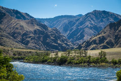 Garganta dos infernos, Idaho fotografia de stock royalty free