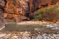 Garganta e rio ao ar livre com água de fluxo Imagens de Stock