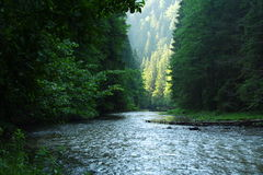 Garganta e rio em Slovakia 2 fotos de stock royalty free