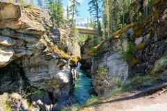 Garganta en el puente natural en Yoho National Park, Canadá Fotos de archivo libres de regalías