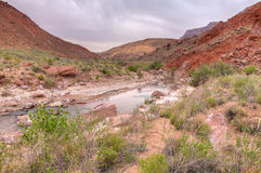 Garganta Garganta-Vermillion do rio da região selvagem-Paria dos penhascos de AZ-UT-Paria Fotografia de Stock Royalty Free