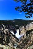 Garganta grande do parque nacional de pedra amarelo foto de stock royalty free