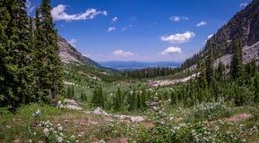 Garganta grande do pincel do parque nacional de Teton Fotografia de Stock Royalty Free